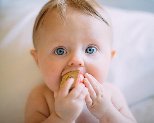 Małe dziecko gryzące klocek